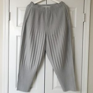 Issey Miyake Homme Plisse Pants Gray size 2